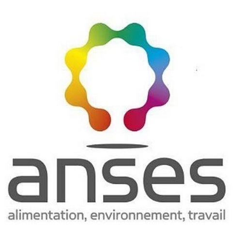 Pôle innovation électromagnétique : projet Anses